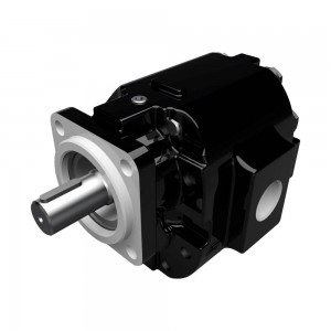 CAST IRON MOTORS-PGM076 SERIES