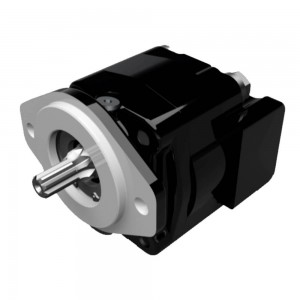 CAST IRON MOTORS-PGM315 SERIES